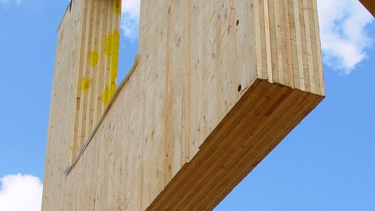 Dietrich's - Dietrich's Software for wood construction